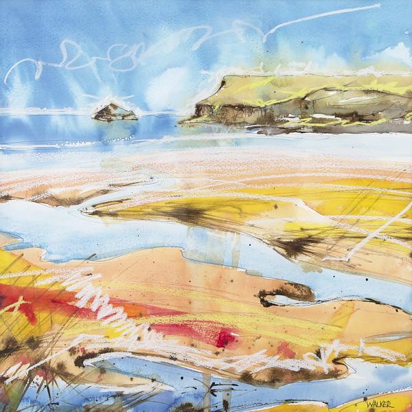 Rob Walker, Warm Sands, Polzeath