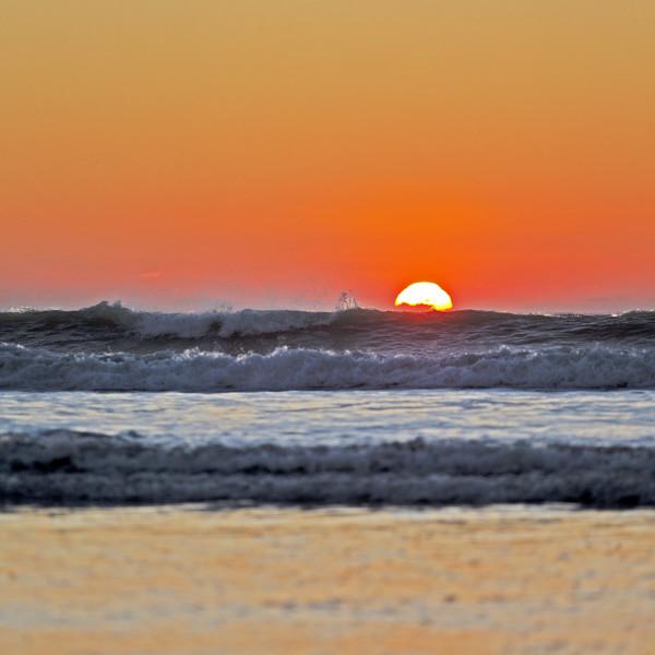 Nick Wapshott, Sundown Surf