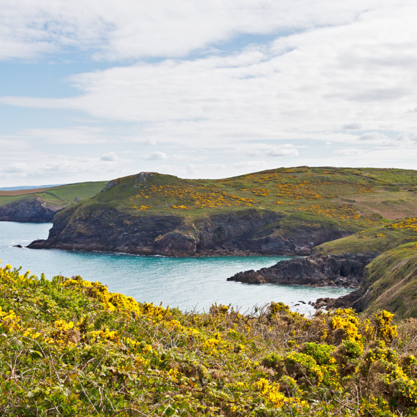 Nick Wapshott, Lundy to Tintagel
