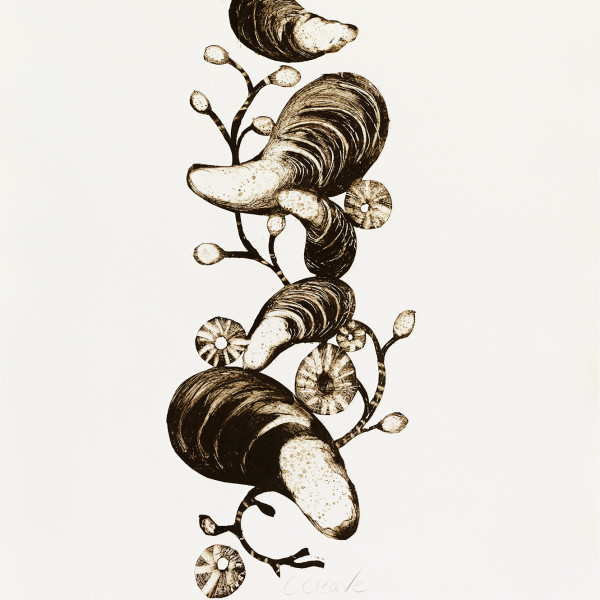 Caroline Cleave, Mussels and Seaweed