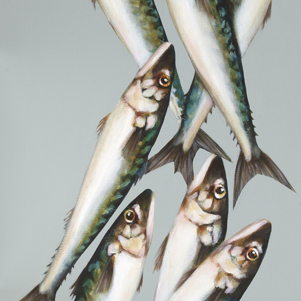 Caroline Cleave, Tidal Mackerel