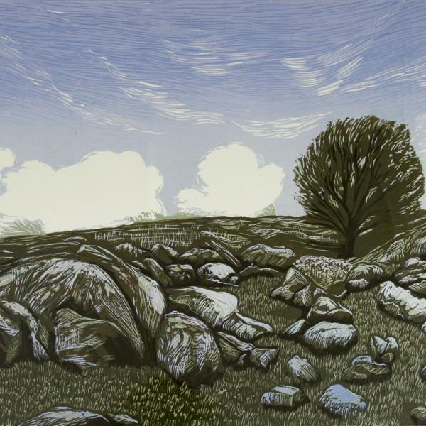 Peter Ursem, Dartmoor Lines II