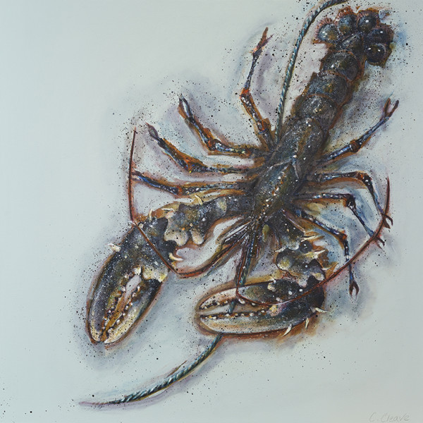 Caroline Cleave - 'Free Flowing' Port Isaac Lobster