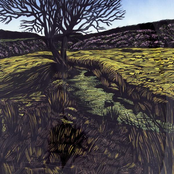 Peter Ursem, Dartmoor Lines I