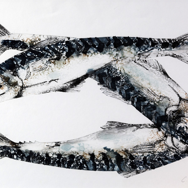 Caroline Cleave, Three Mackerel
