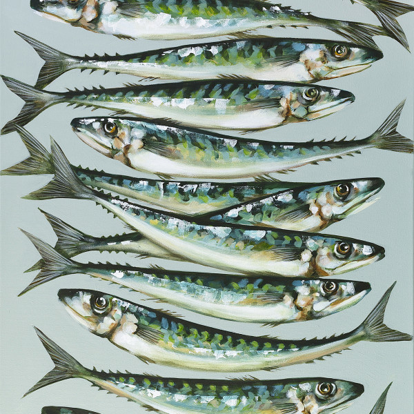 Caroline Cleave, A Dozen Mackerel