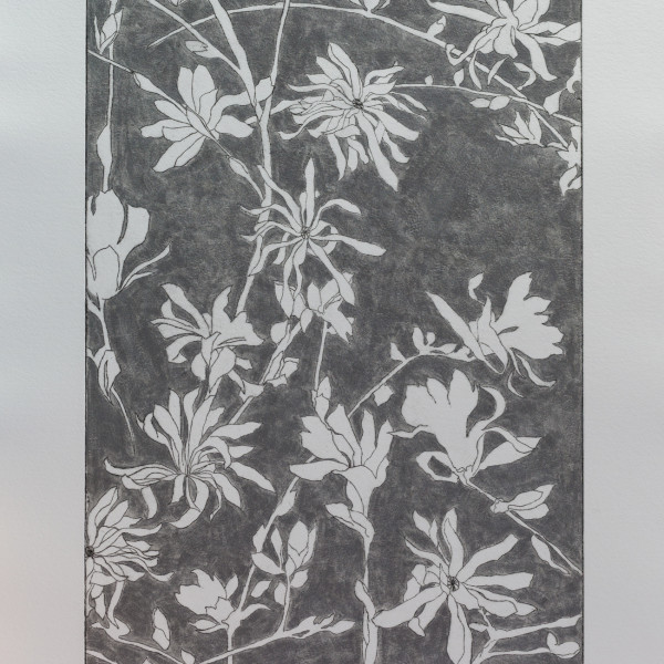 Sally Spens, Steel Magnolias II