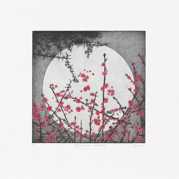 Sally Spens - Night Garden II