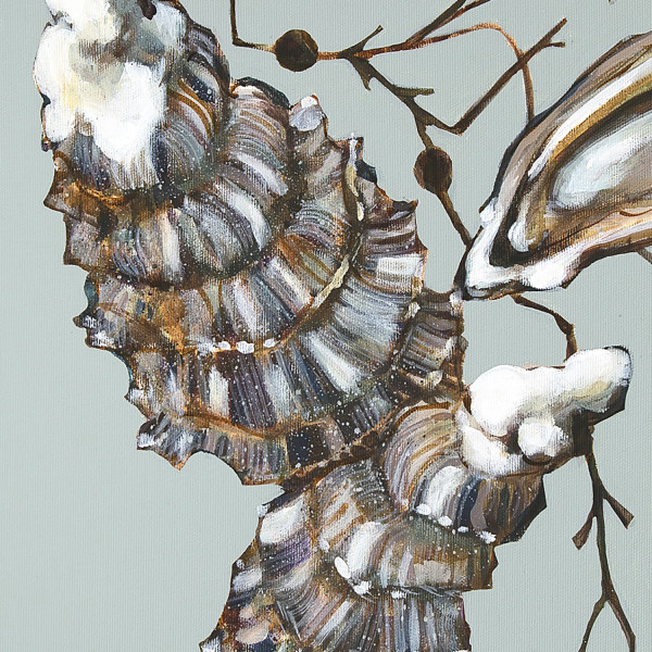 Caroline Cleave, Porthilly Oysters I