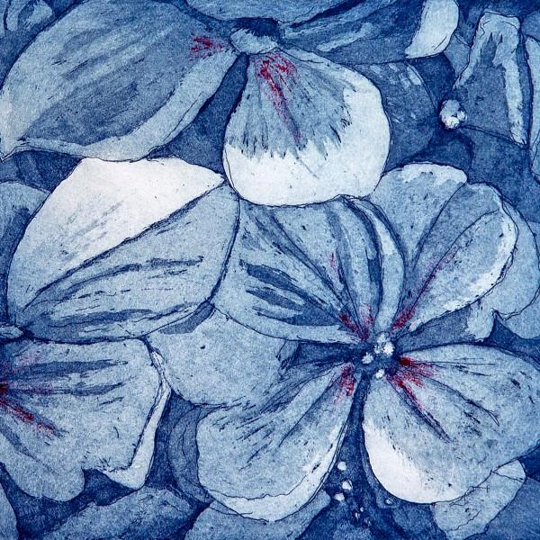 Sarah Seddon, Blue Hydrangea