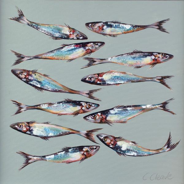 Caroline Cleave, Eleven Sardines