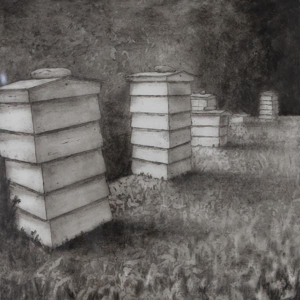 Sarah Seddon, Beehives