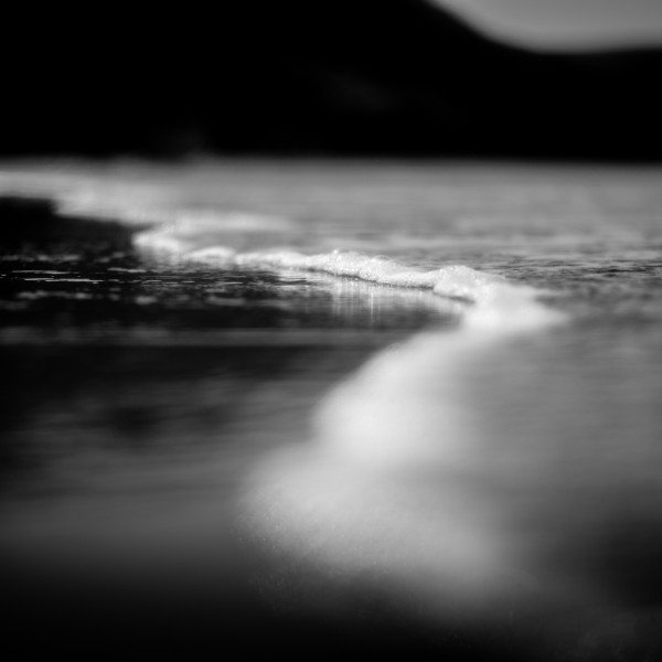 Nick Reader, Shoreline