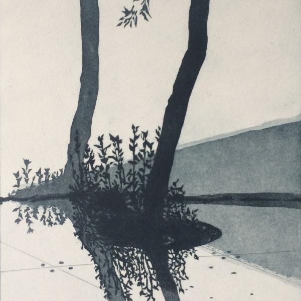 Sally Spens, Biennale Shadows II