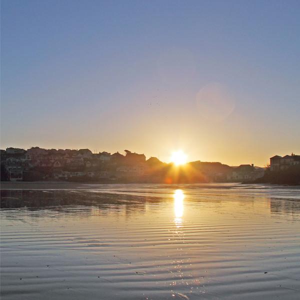 Nick Wapshott, Sun Rising