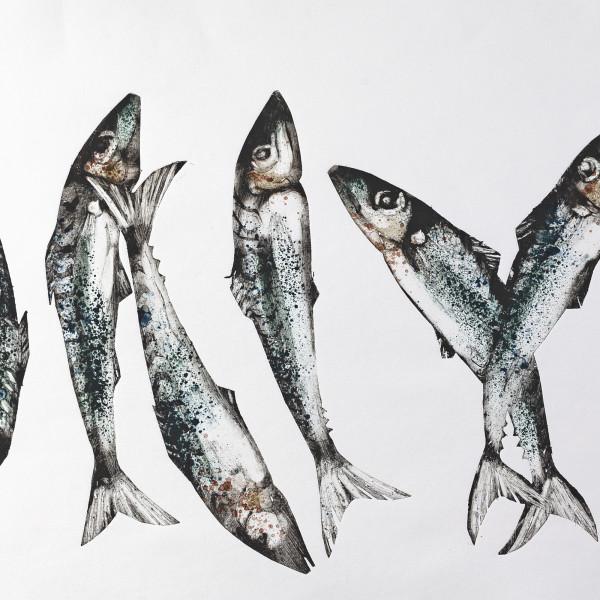 Caroline Cleave, Fish x Seven