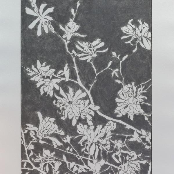 Sally Spens, Steel Magnolias 1