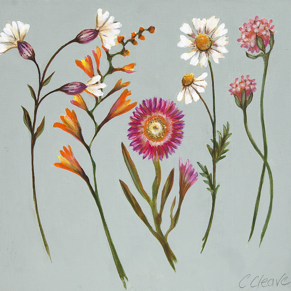 Caroline Cleave, Cornish Garden Flowers