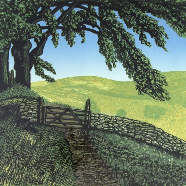 Peter Ursem - Dartmoor Lines III