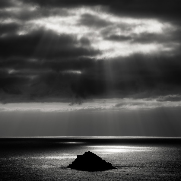 Nick Reader, Newland Island