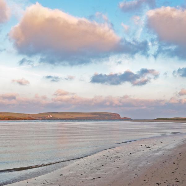 Nick Wapshott, Estuary Dawn