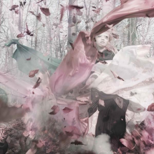 Diego Fuga - Falling Star, 2007
