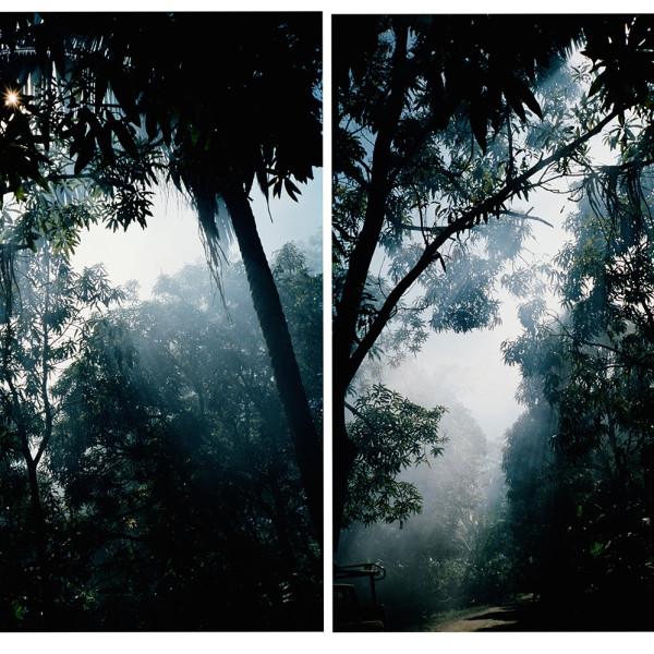 Salim Langatta - Untitled (Mal Pais), 2005