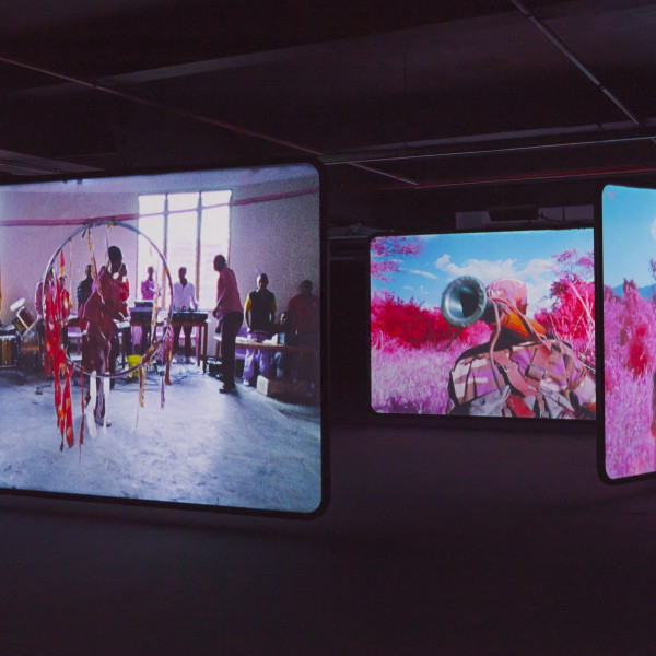 Richard Mosse: The Enclave