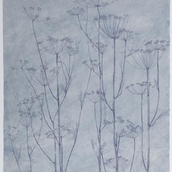 Sarah Horowitz, Blue Seed Heads (2021), ink on hand-dyed okawara paper, 55 1/2 x 29 3/4 in