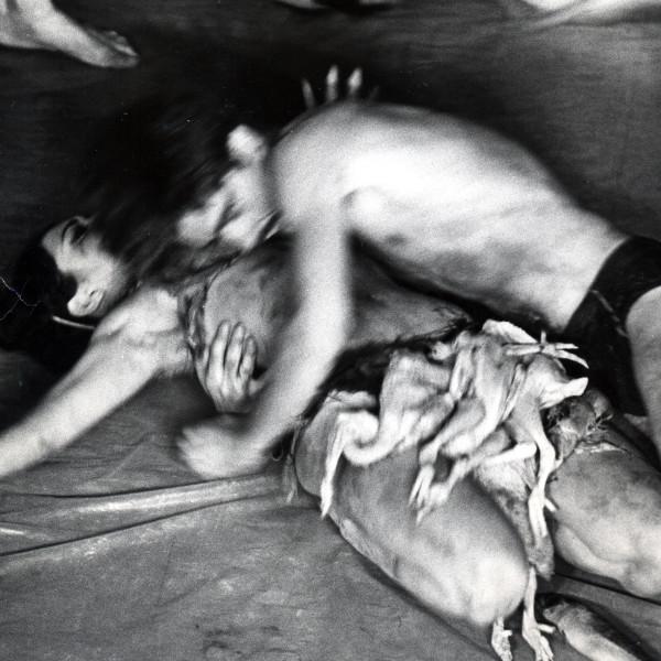 Detail of Carolee Schneemann, Meat Joy, 1964, Silver print, Framed: 23 3/4 x 20 1/4 in, 60.3 x 51.4 cm