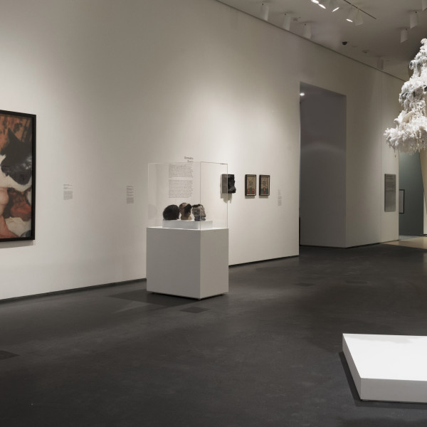 Carolee Schneemann | Out of Place: A Feminist Look at the Collection | Brooklyn Museum | Temporarily Closed