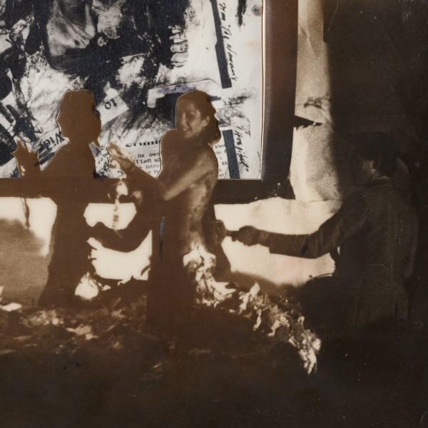 Carolee Schneemann at The Artist's Institute, New York