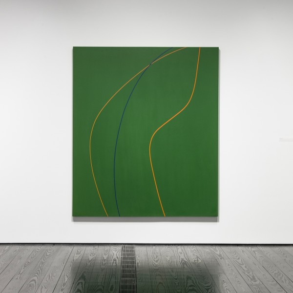 Installation view of Virginia Jaramillo: The Curvilinear Paintings, 1969-1974, The Menil Collection, Houston, 2020. Photo by Paul Hester
