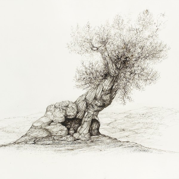 Raffi Kaiser Drawings