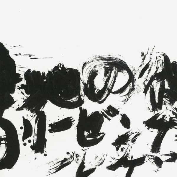 Überflogenes Weiß (II). Thomas Baumhekel. Arkona. Deutsche Landschaft Japanisch