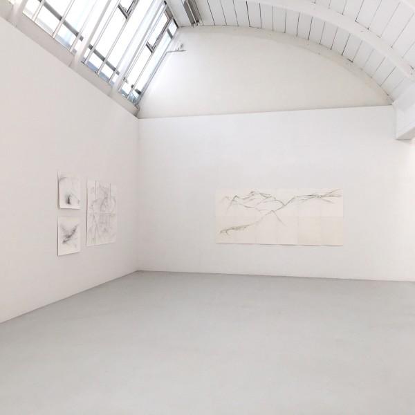 Ausstellungansichten: Raffi Kaiser. Von Bäumen und Bergen