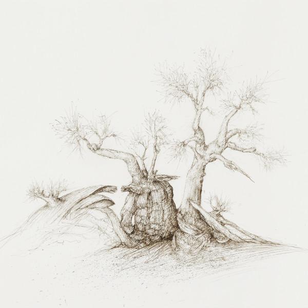 Artikel in der F.A.Z. über die Ausstellung von Raffi Kaiser in der Galerie Friedrich Müller