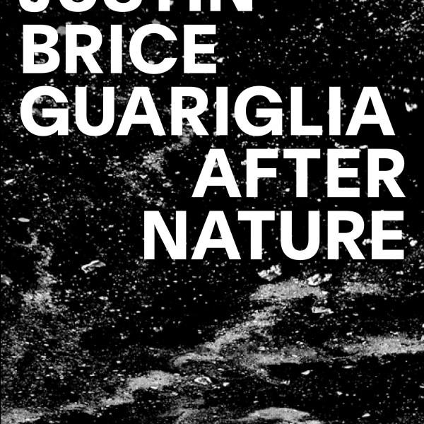 After Nature: Justin Brice Guariglia