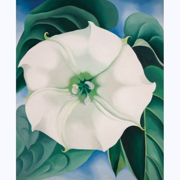 Georgia O'Keeffe, 'Jimson Weed/White Flower No. 1, 1932' © 2016 Georgia O'Keeffe Museum/DACS, London. Photograph by Edward C. Robison III