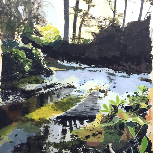 Drax Forest Dorset - Winter Study 2