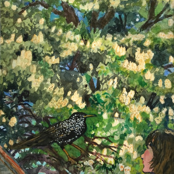 June Berry RWS RE, The Starling