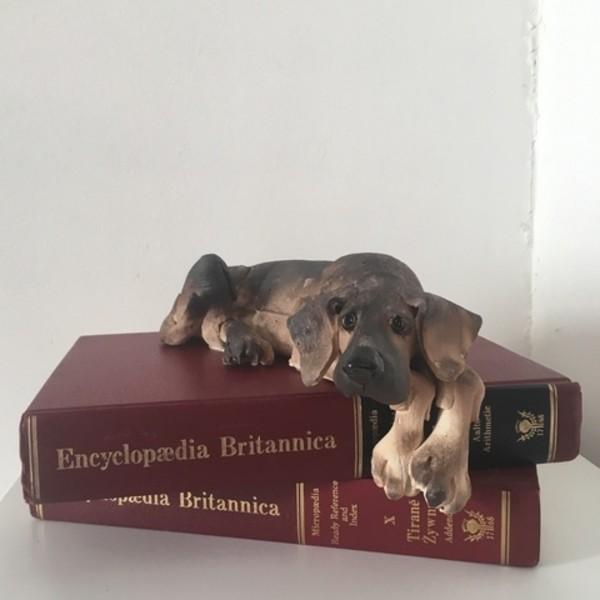 Virginia Dowe - Edwards - Small Lying Dog