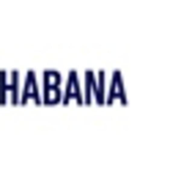 Abraham Cruzvilegas and Michel François: XII Havana Biennale 2015