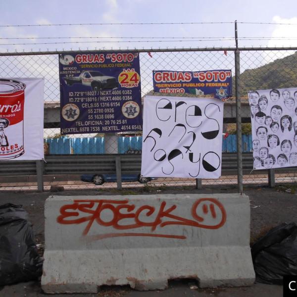 28.02.2019 - Abraham Cruzvillegas, Anya Gallaccio: Special Project at Ignacio Zaragoza Avenue