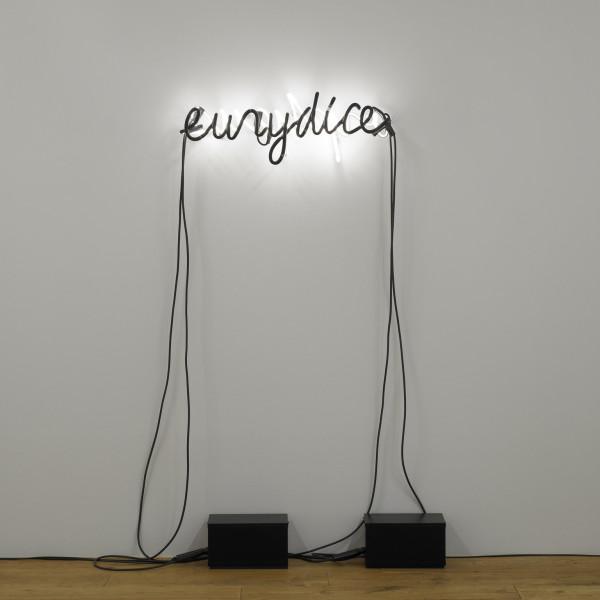 30.01.2020 - Glenn Ligon: Artist Talk, The Menil Collection
