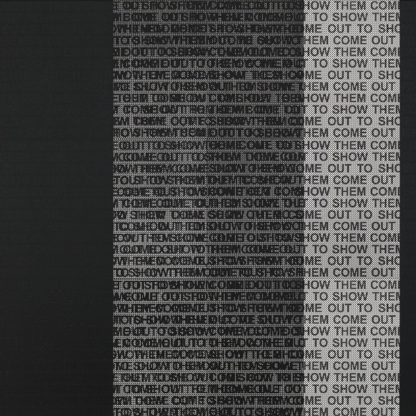 Glenn Ligon: Call and Response
