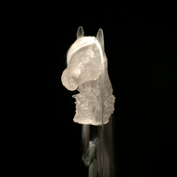 Emily Nachison - Dream Pony, 2017