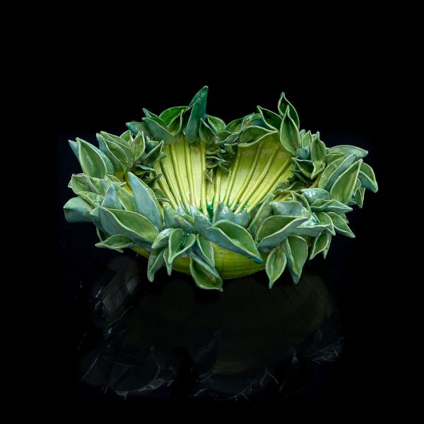 Frances Doherty, Green Flower Sea Anemone