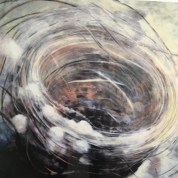 Joyce Pinch, Goldfinch Nest