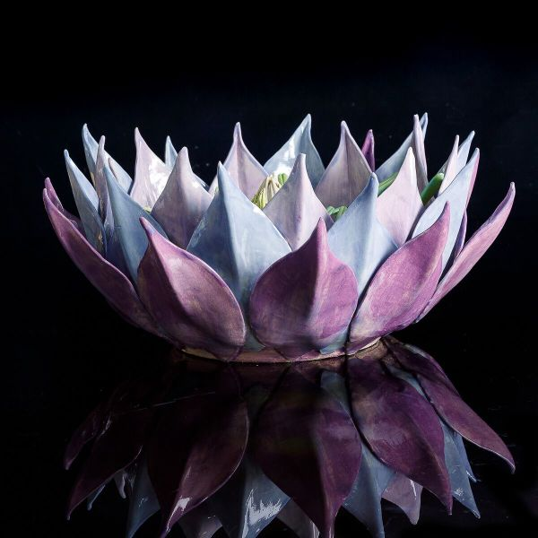 Frances Doherty, Purple Protea